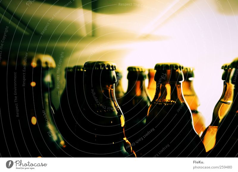 Green Joy Cold Feasts & Celebrations Food Brown Bright Contentment Glass Beverage Kitchen Delicious Beer Bar Euphoria Bottle
