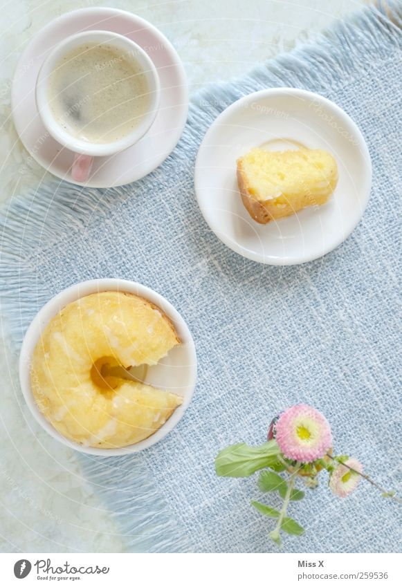 Flower Nutrition Food Small Blossom Pink Beverage Sweet Coffee Crockery Cake Cup Plate Delicious Baked goods Dessert