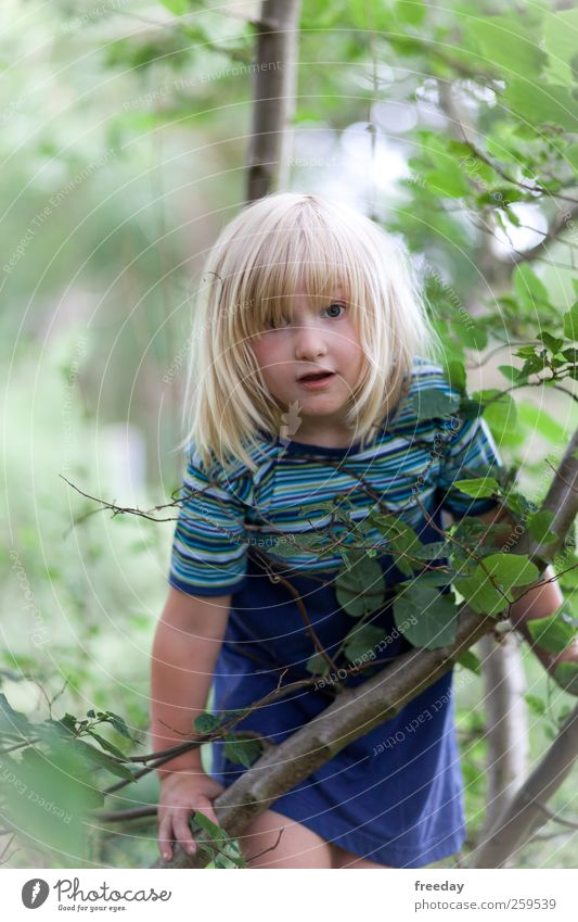 Human being Child Nature Tree Plant Girl Summer Face Forest Environment Life Playing Freedom Hair and hairstyles Garden Air