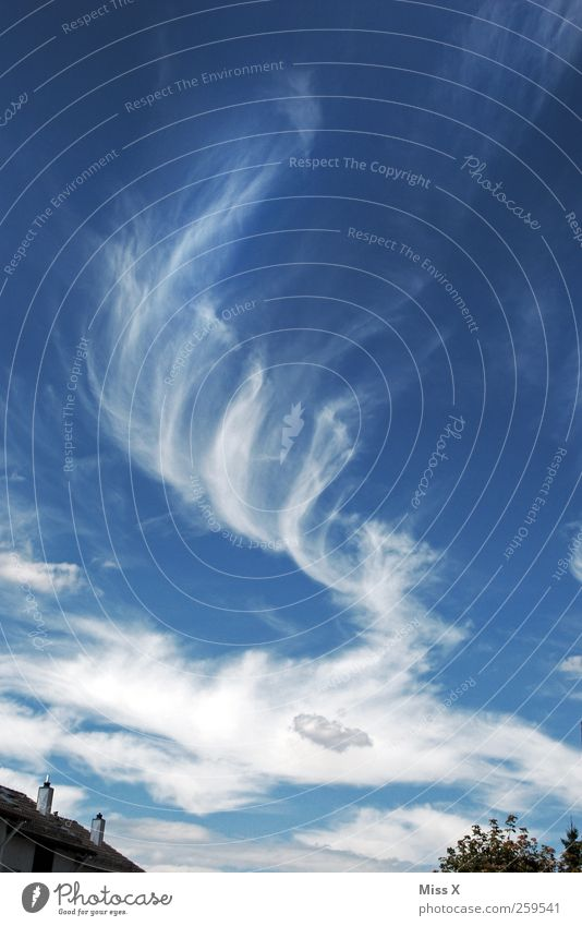 Sky Blue Clouds Weather Wind Exceptional Beautiful weather Swirl