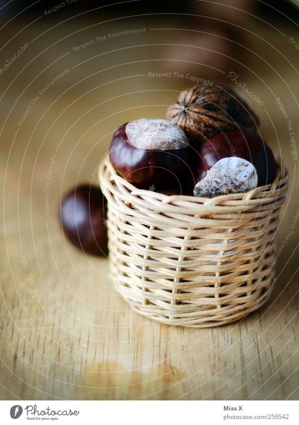 chestnuts Bowl Brown Chestnut Nut Walnut Basket Wood Colour photo Subdued colour Close-up Deserted Shallow depth of field