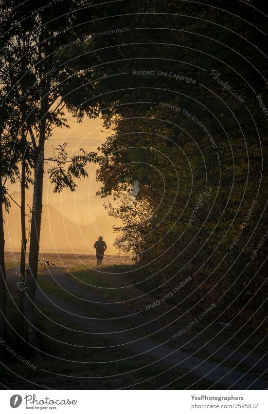 Man running silhouette at sunrise Lifestyle Freedom Sports Sportsperson Jogging Adults 1 Human being Nature Landscape Autumn Fog Tree Forest Athletic Success