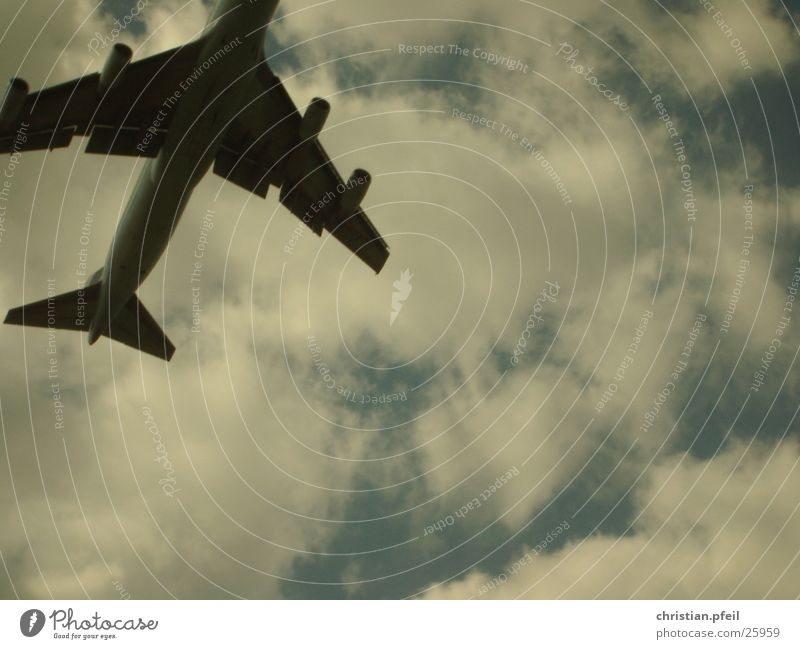 Sun Blue Summer Clouds Far-off places Airplane Horizon Speed Aviation Wing Airport Fate South Departure Engines