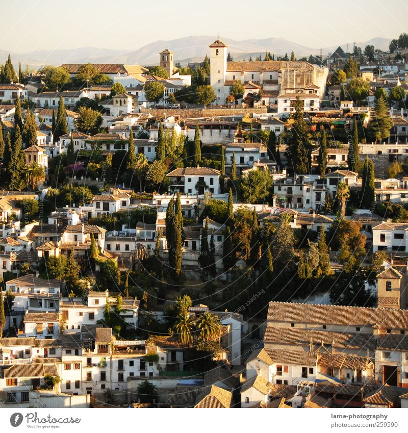 Albaicín [VIII] Vacation & Travel Tourism Trip City trip Sunlight Hill Granada albaicin Andalucia Spain Town Downtown Old town House (Residential Structure)