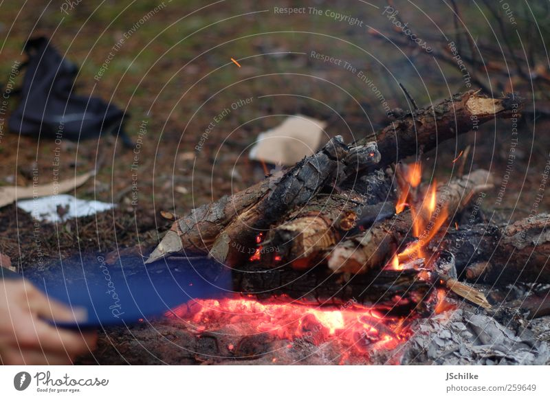 Nature Hand Far-off places Wood Work and employment Adventure Blaze Political movements Simple Warm-heartedness Hot Camping Flame Expedition Survive Fireplace