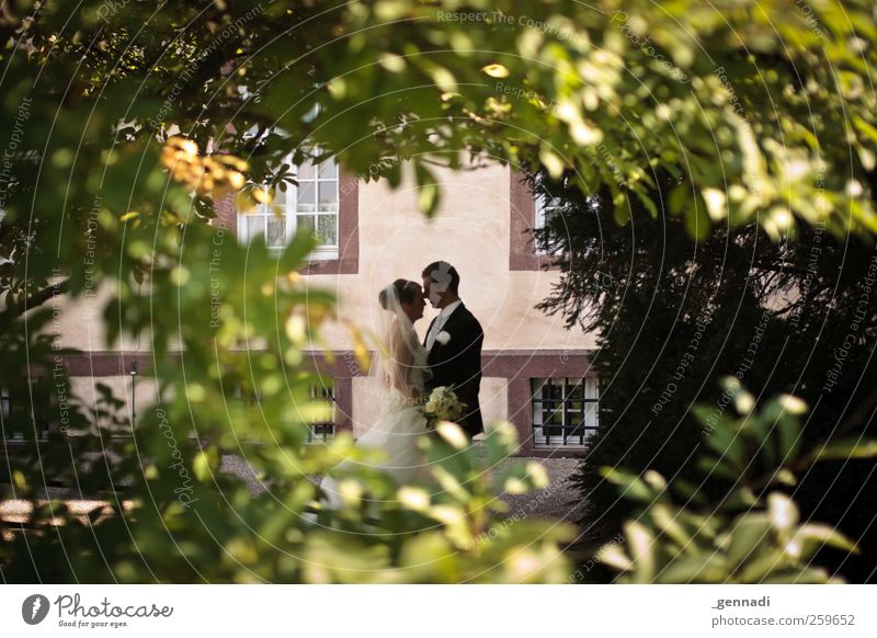 Human being Woman Man Youth (Young adults) Leaf Adults Love Window Happy Couple Body Together Masculine Bushes Romance 18 - 30 years
