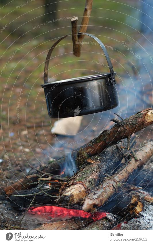 old school cooking Picnic Pot Adventure Far-off places Safari Expedition Camping Nature Wood Simple Calm Scouts Cooking Blaze Fireplace Stone Age
