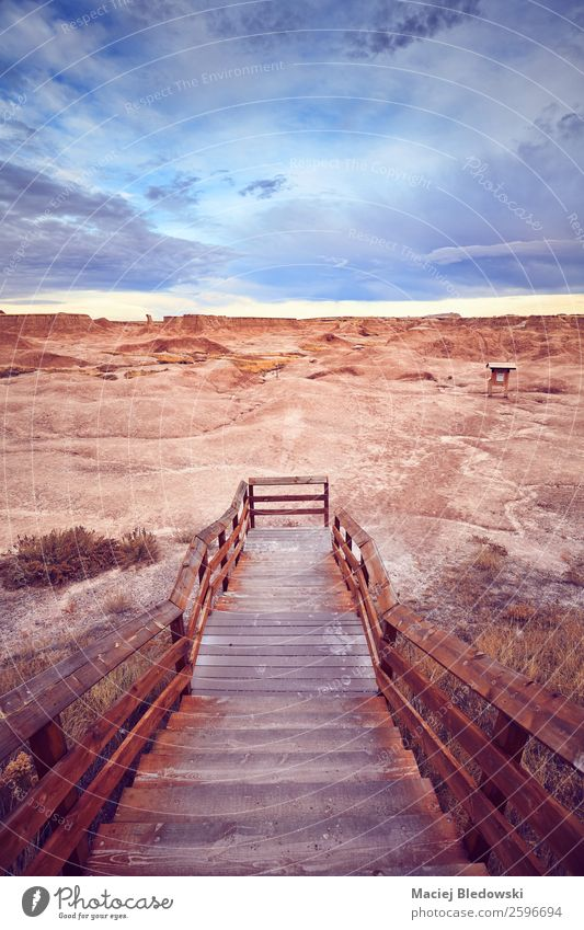 Wooden stairs to a trail in Badlands National Park. Vacation & Travel Tourism Trip Adventure Far-off places Freedom Expedition Camping Summer vacation Mountain