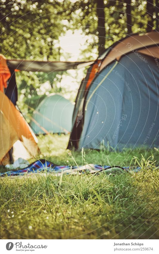 Camping in the forest Environment Nature Landscape Beautiful weather Grass Meadow Forest Emotions Moody Joy Contentment Joie de vivre (Vitality) Together Tent