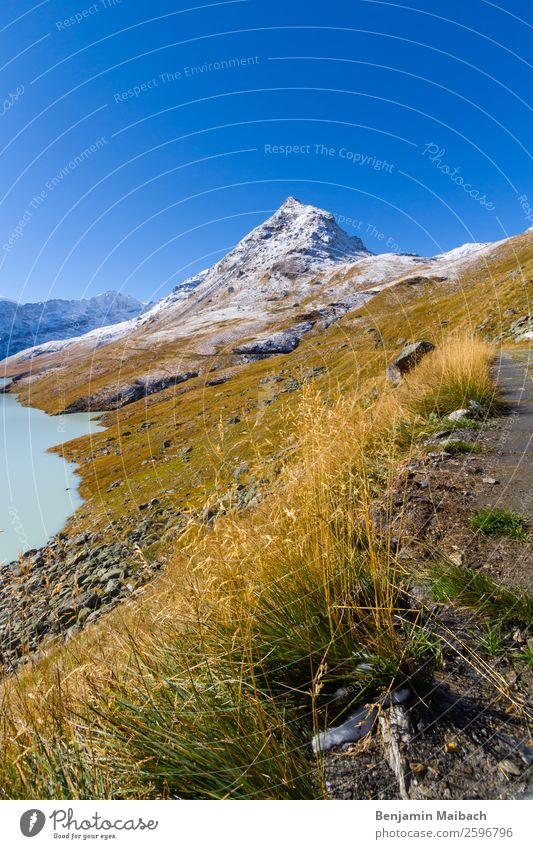 Mountain peaks with grass and snow Nature Landscape Plant Sky Autumn Weather Beautiful weather Snow Grass Hill Peak Snowcapped peak Lakeside Blue Green White