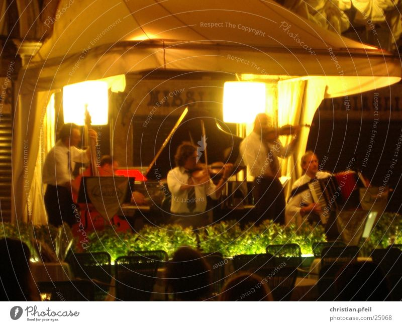 Concert in Venice Night Playing Classical Violin Light St. Marks Square Italy Vacation & Travel Green Café Restaurant Human being Listening Style Musician Group