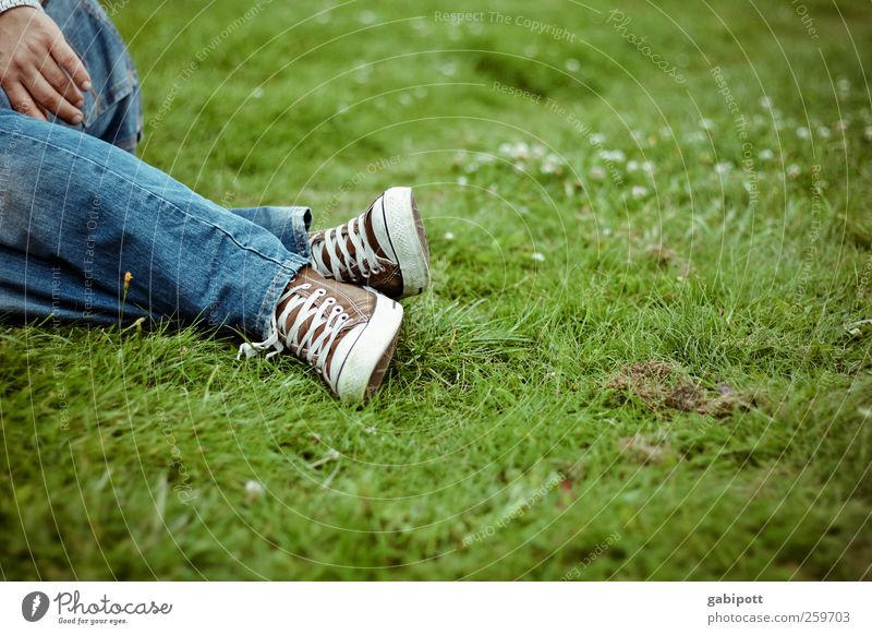 to lie again on the meadow would be beautiful! Masculine Legs Feet Landscape Summer Beautiful weather Park Meadow Lie Hip & trendy Positive Blue Green