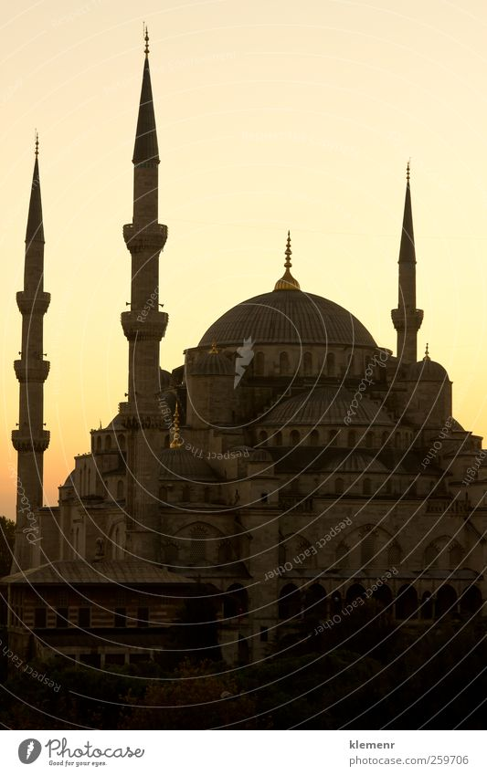 Blue Mosque in Istanbul's sunset scene - vertical Tourism Culture Sky Building Architecture Monument Religion and faith famous turkey Middle eastern Islam asian