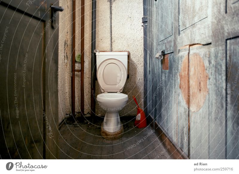 royal flush Wall (barrier) Wall (building) Toilet Toilet paper Car door Conceited Colour photo Long shot