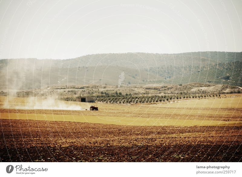 Loneliness Environment Landscape Work and employment Brown Earth Field Dirty Dry Agriculture Harvest Farmer Forestry Tractor Badlands