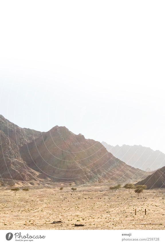 arid Nature Landscape Sun Sunlight Warmth Drought Hill Rock Mountain Desert Dry Yellow Sunbeam Sand Colour photo Exterior shot Deserted Copy Space top Day Light