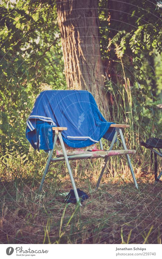 They dug up the folding chair... Lifestyle Style Vacation & Travel Trip Adventure Far-off places Freedom Summer vacation Nature Beautiful weather Tree Grass