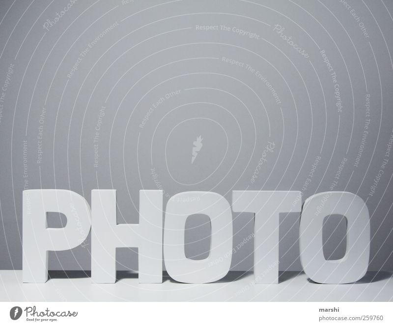 photo Wood Sign Characters Gray White Photography Take a photo Symbols and metaphors Isolated Image Word Logo Reading Write Light Shadow Colour photo