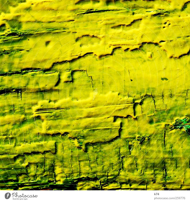 green to yellow Wood Old Crazy Yellow Green Protection Decline Transience Change Varnish Background picture Erosion Colour photo Multicoloured Exterior shot