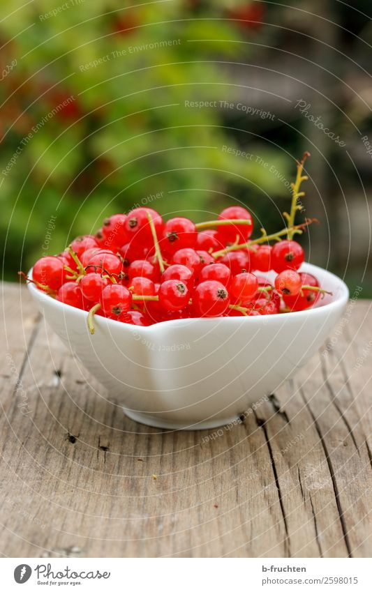 A bowl of currants Food Fruit Nutrition Organic produce Vegetarian diet Healthy Eating Summer Select Fresh Red To enjoy Redcurrant Bowl Containers and vessels