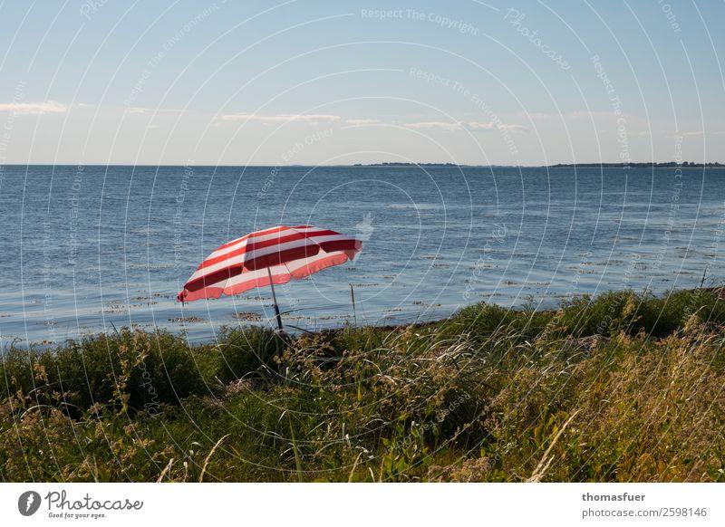 beach, parasol, sea Vacation & Travel Trip Summer Summer vacation Sunbathing Beach Ocean Island Nature Landscape Sand Air Water Cloudless sky Horizon