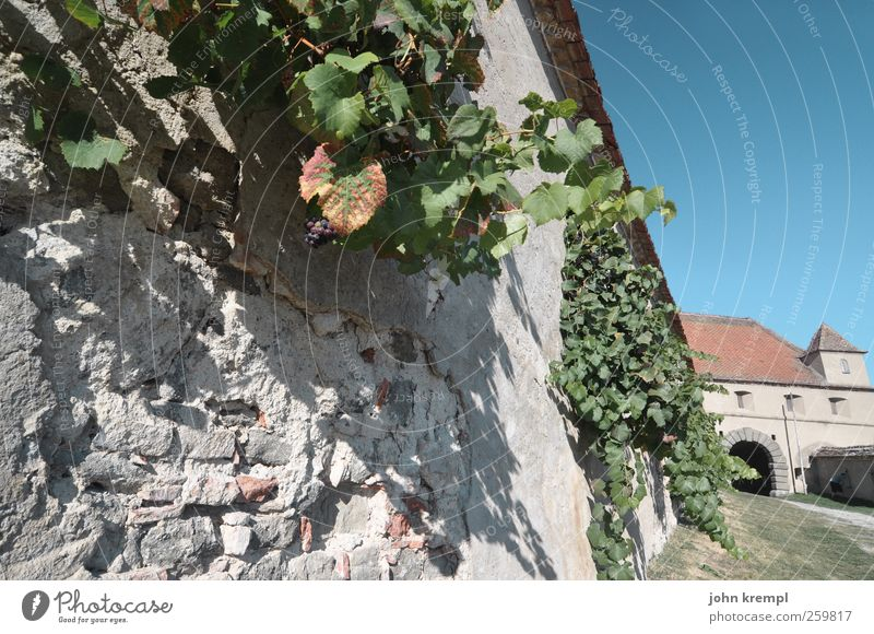 In need of support Riegersburg Federal State of Styria Austria Village Gate Wall (barrier) Wall (building) Tourist Attraction Landmark Monument Famousness
