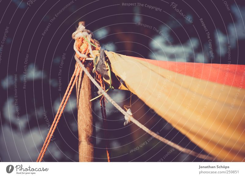 Nature Red Far-off places Yellow Environment Freedom Style Brown Park Wild Lifestyle Beautiful weather Rope String Adventure Cloth