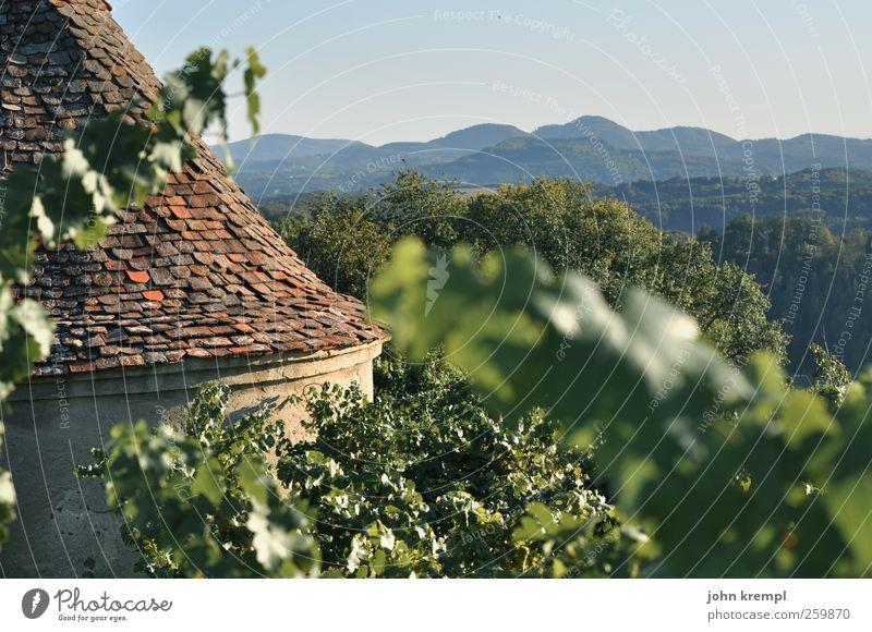 Cry! Autumn Vine Hill Alps Mountain Vineyard Riegersburg Federal State of Styria Austria Village Manmade structures Building Architecture Roof Roofing tile