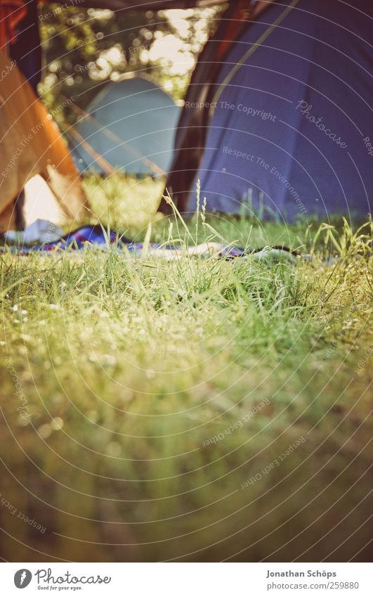 Nature Youth (Young adults) Vacation & Travel Far-off places Relaxation Meadow Environment Freedom Grass Trip Wild Adventure Lifestyle Idyll Camping Joie de vivre (Vitality)