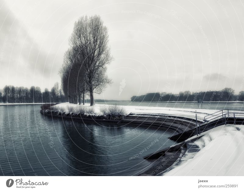 waterway Landscape Sky Clouds Horizon Winter Tree River bank Old Dark Blue Gray Black White Moody Calm Sadness Cold Lanes & trails Colour photo Subdued colour