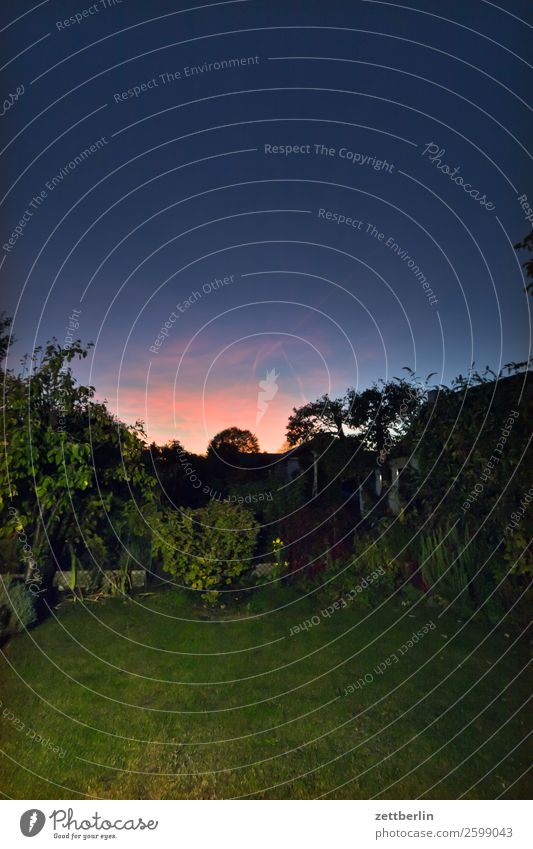Twilight in the garden Evening Dark Colour Play of colours Closing time Sky Heaven Background picture Deserted Romance Sunset Spectral Copy Space Weather Night