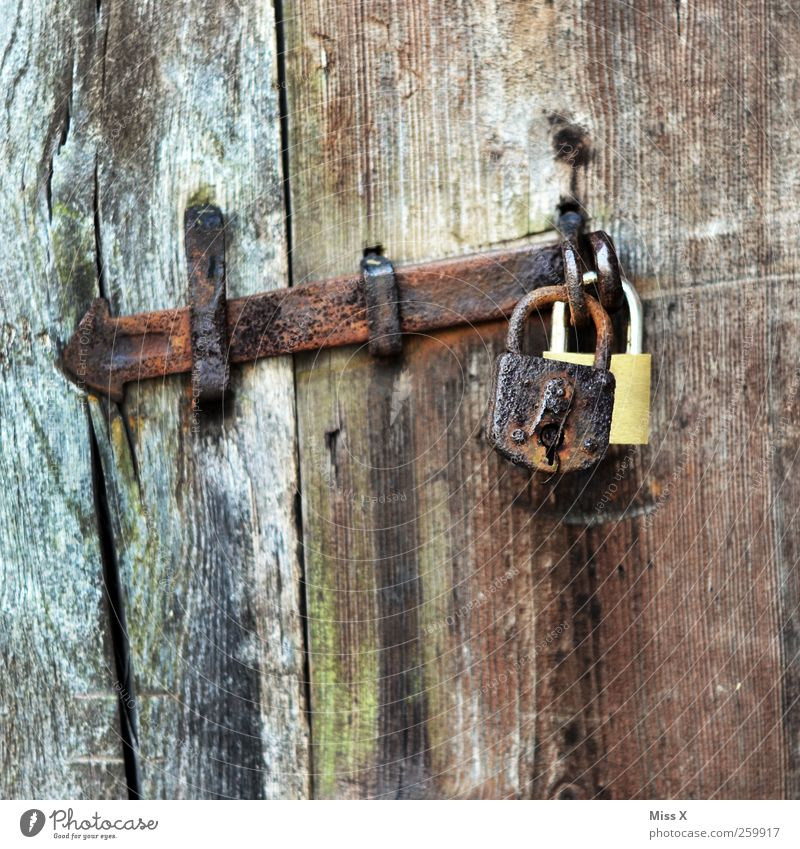 Old & New /or/ Double holds better Door Wood Brown Decline Lock Wooden door Rust Closed Safety Iron In pairs Colour photo Subdued colour Close-up
