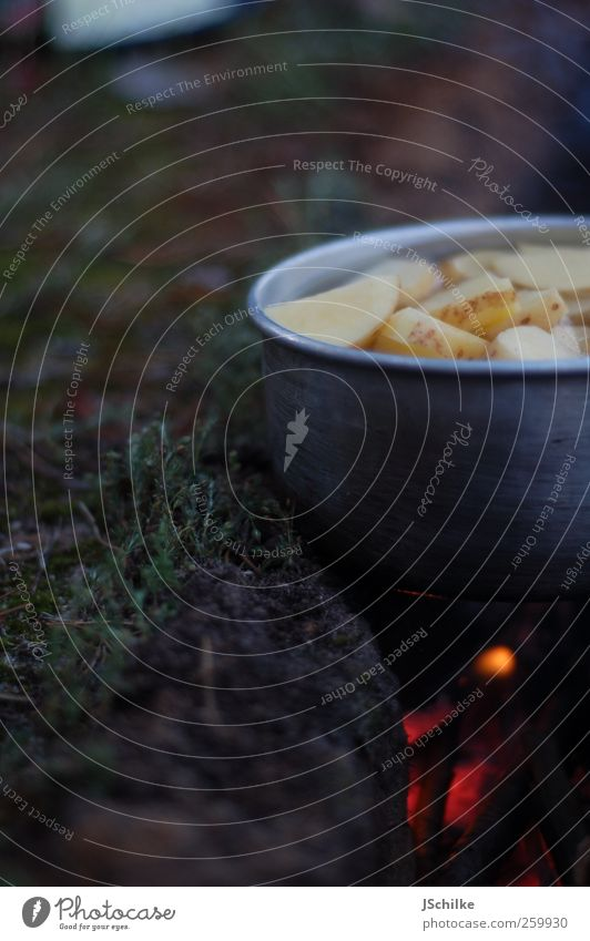 anti fast food Food Soup Stew Dinner Picnic Organic produce Pot Luxury Harmonious Calm Vacation & Travel Adventure Far-off places Expedition Camping Summer