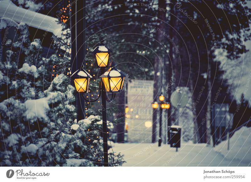 old shining lantern in winter landscape for christmas Environment Nature Weather Snow Happiness Anticipation Vacation & Travel Stagnating Moody Tradition Dream