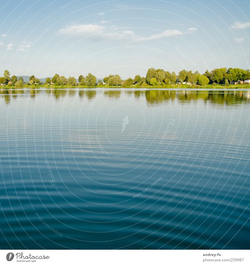 Sky Nature Blue Water Tree Vacation & Travel Summer Environment Warmth Coast Lake Horizon Waves Clean Beautiful weather Seasons