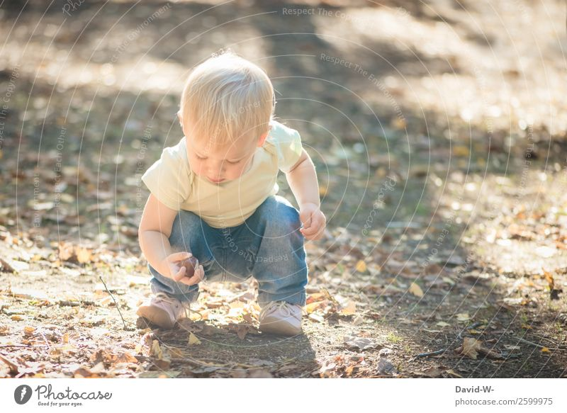 Child Human being Nature Hand Girl Life Environment Boy (child) Small Infancy Beautiful weather Cute Observe Curiosity To hold on Toddler