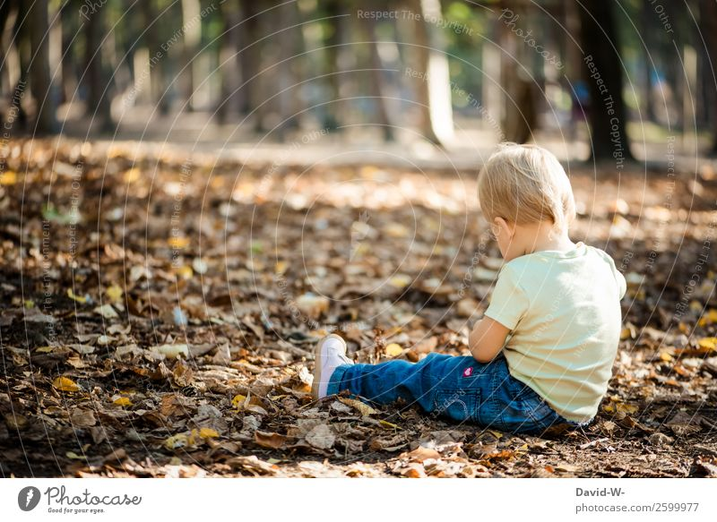 Child Human being Nature Beautiful Leaf Girl Life Autumn Environment Feminine Small Think Infancy Sit Beautiful weather Cute