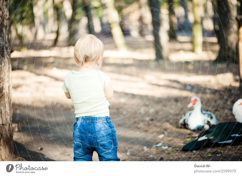 Child Human being Nature Summer Beautiful Calm Forest Girl Life Feminine Boy (child) Contentment Masculine Infancy Beautiful weather Cute