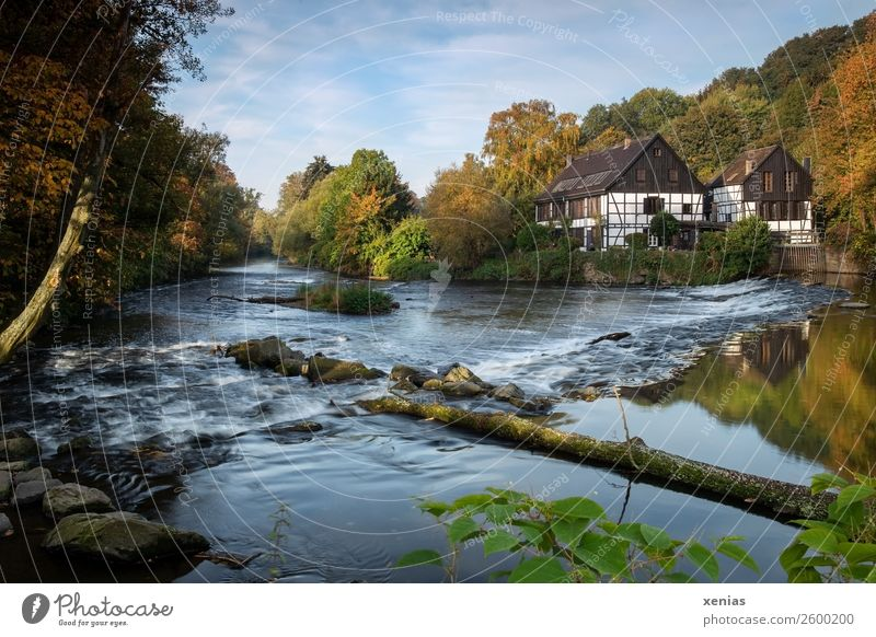Nature Beautiful weather River River bank Brook North Rhine-Westphalia Half-timbered house Wupper Mountainous area