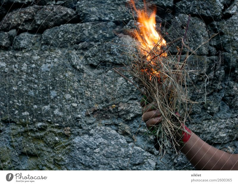 fire Arm Hand Grass Wall (barrier) Wall (building) Stone Concrete Hot Bright Uniqueness Beautiful Gray Orange Red Brave Fear Exotic Risk Pain Fire Burn
