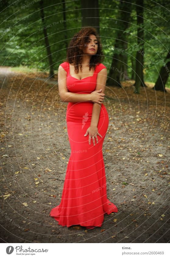 Nikoliya Feminine Woman Adults 1 Human being Tree Park Forest Lanes & trails Dress Brunette Long-haired Curl To hold on Looking Wait Beautiful Green Red
