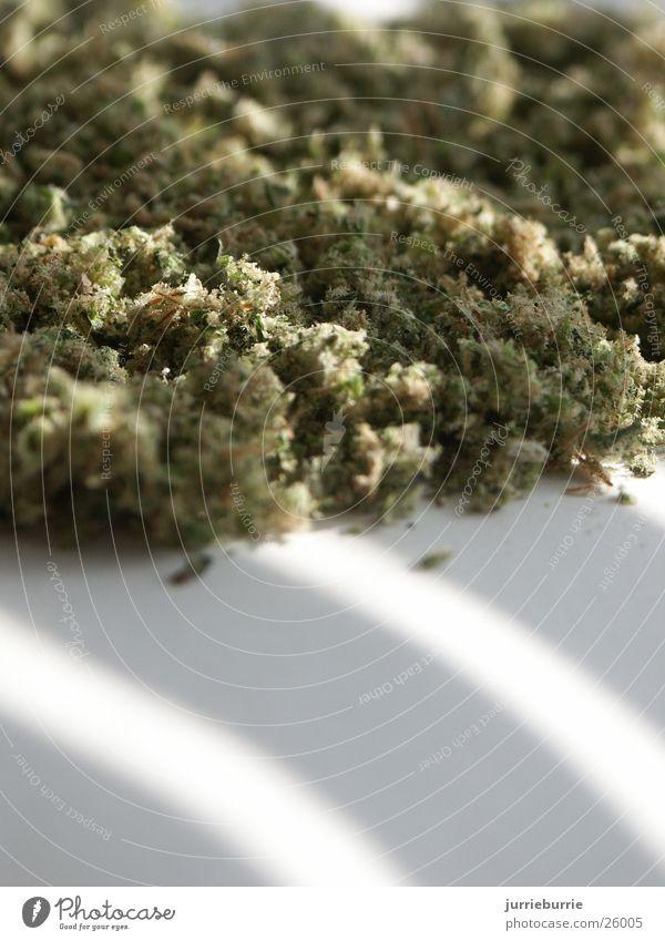 pile of pot Cannabis Pot wiet scrambled natural