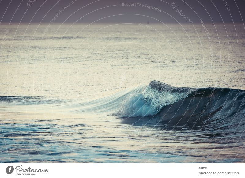 Nature Blue Water Environment Cold Landscape Gray Coast Weather Horizon Waves Wild Elements Baltic Sea Surface of water