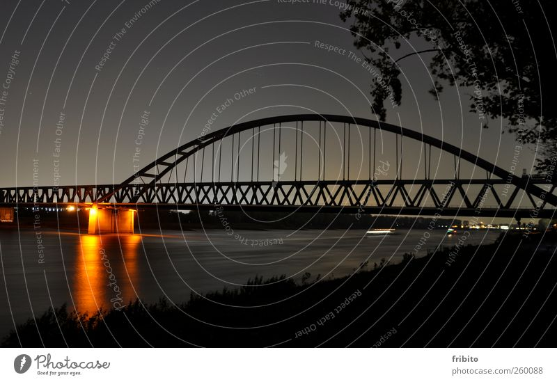 The Rhine City trip Architecture Landscape Animal Elements Water Sky Night sky Bushes River bank Duesseldorf Town Bridge Manmade structures Train travel