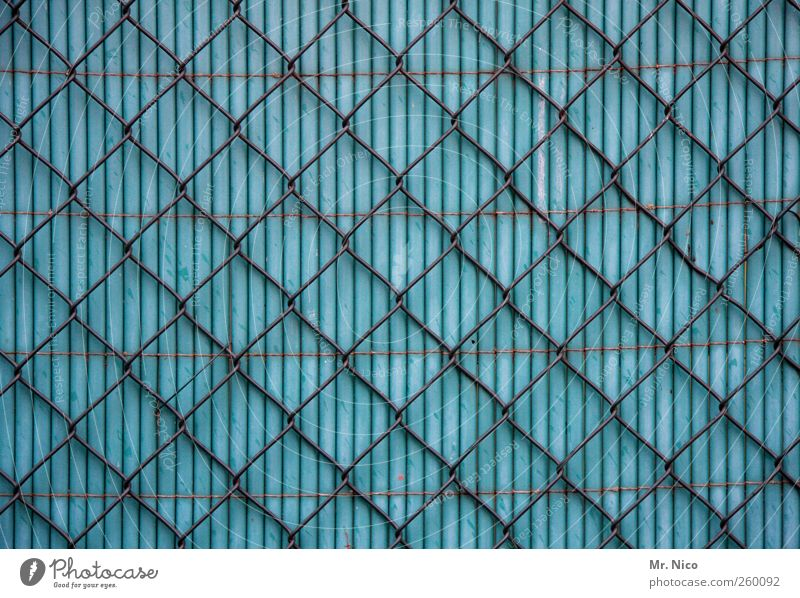 Blue Freedom Garden Facade Closed Safety Curiosity Plastic Net Fence Border Society Barrier Screening Real estate Cramped