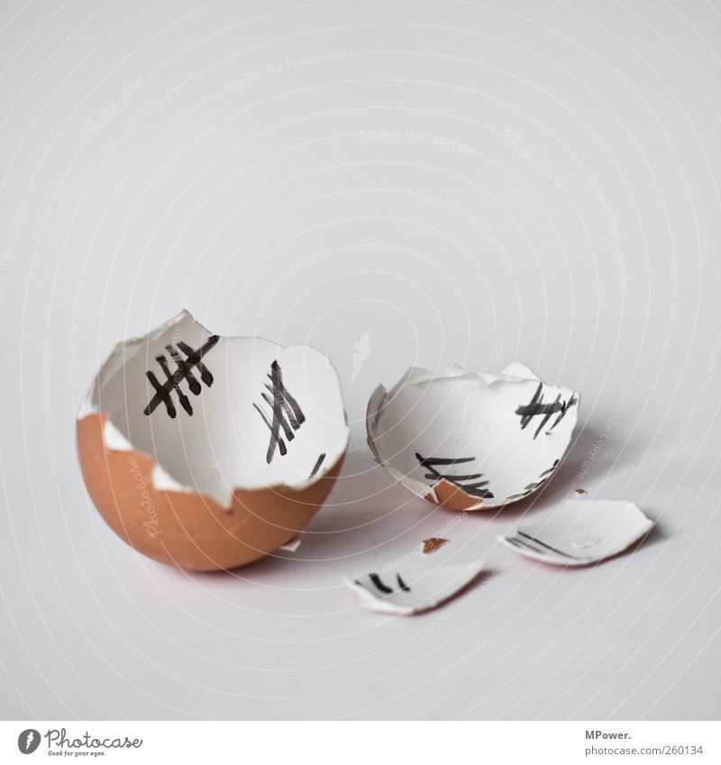 past the days of yolk life Food Egg Slip Eggshell Outbreak Broken Hen's egg Chick Easter Fragment Freedom Independence Line Numbers tally Erupted Character