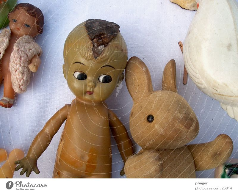 Old Broken Obscure Doll Hare & Rabbit & Bunny Mistrust Flea market Sideways glance