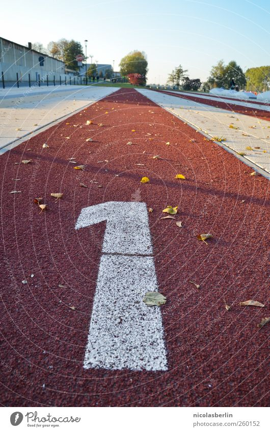 366 Leisure and hobbies Trip Sports Track and Field Sportsperson Award ceremony Success Jogging Sporting event Racecourse Deserted Wall (barrier)