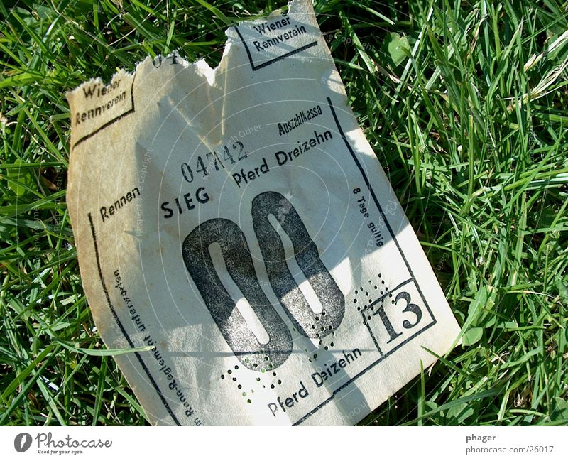 Meadow Grass Happy Success Horse Empty Hope Obscure Piece of paper Sporting event Disaster Lose 13 Loser Bet
