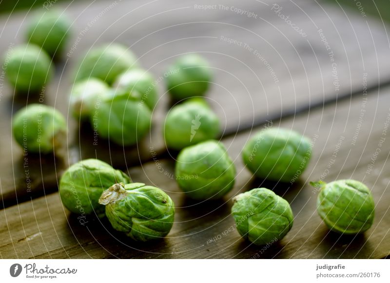cabbage Food Vegetable Nutrition Organic produce Vegetarian diet Wood Small Round Green Colour photo Exterior shot